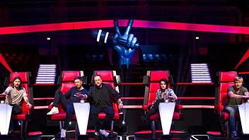"""The Voice of Germany"": Die Coaches unter der Lupe"